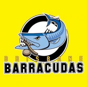 Brisbane Underwater hockey